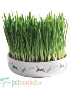 Trixie: Keramička činija za mačju travu