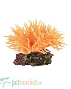 Trixie: Dekoracija Koral