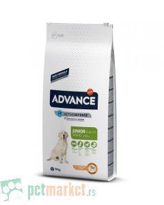 Advance: Maxi Junior, 14 kg