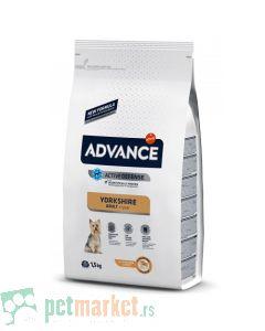 Advance: Breed Jorkširski terijer Adult, 1.5 kg