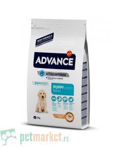 Advance: Puppy Protect Maxi