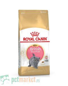 Royal Canin: Breed Nutrition Kitten British Shorthair