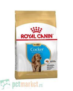 Royal Canin: Breed Nutrition Koker Puppy, 3 kg