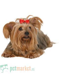 Trixie: Ukrasne mašnice za pse, 10 kom