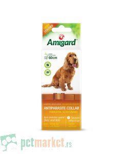 Amigard: Antiparazitska ogrlica za pse