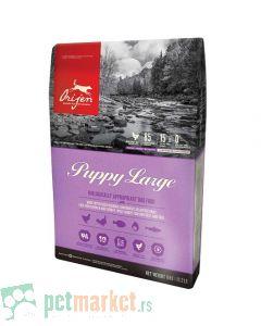 Orijen: Puppy Large