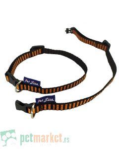 Pet Line: Ogrlica za pse Toy Fox Terrier