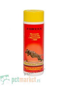 Fortan: Preparat za negu hrskavica i zglobova Plu-Fortan Protect, 350 gr