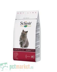 Schesir: Sterilized and Overweight